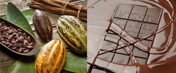 Cacao amer CLUIZEL en vrac - Pur cacao CLUIZEL
